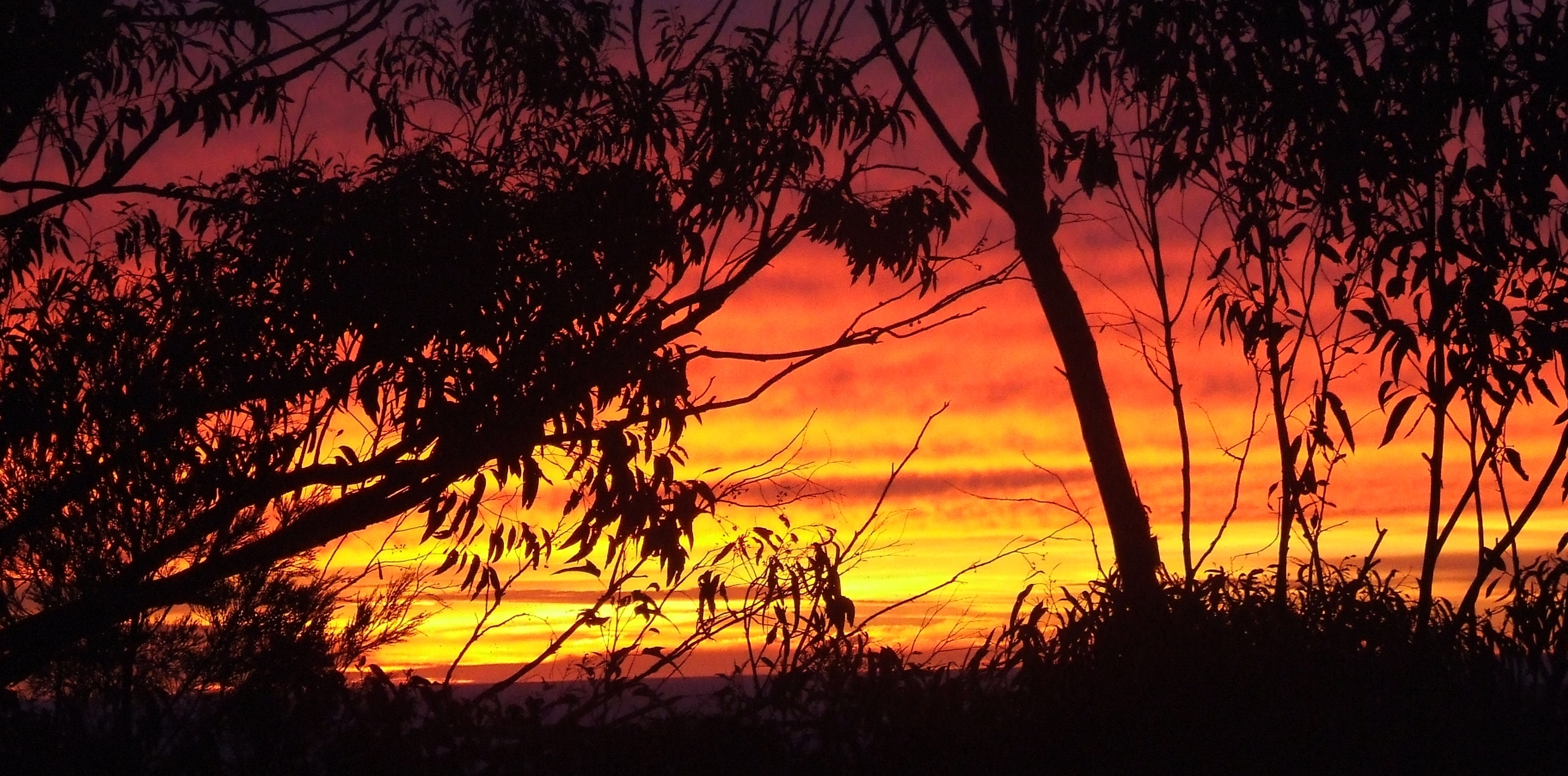 Soak in the Sunset at a NSW State Park